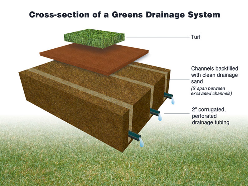 Turf Drainage Systems Ltd : Existing Green Drainage